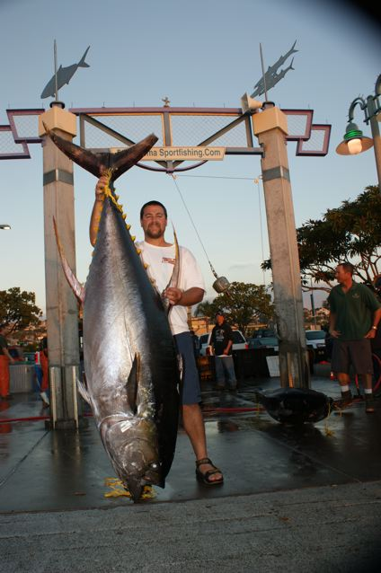 Marc Schmidt - 350.2# Yellowfin Tuna