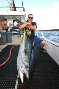 Royal Polaris Yellowfin Tuna